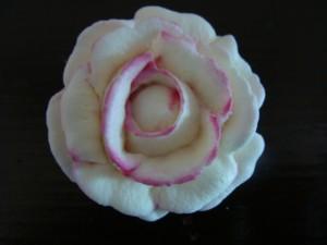 rosa ghiaccia reale
