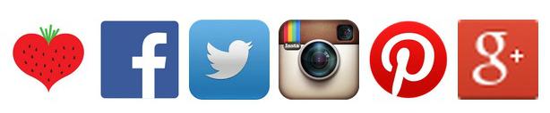 facebook twitter instagram pinterest google+